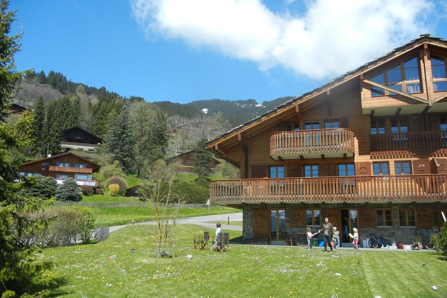 Beautiful mountain chalet apartment