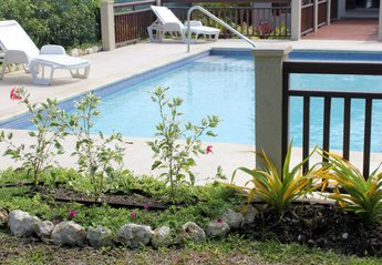 Villa in Barbados, Lower Carlton: Pool and Recliners