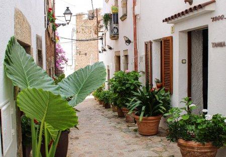 Apartment in Tossa de Mar, Spain: