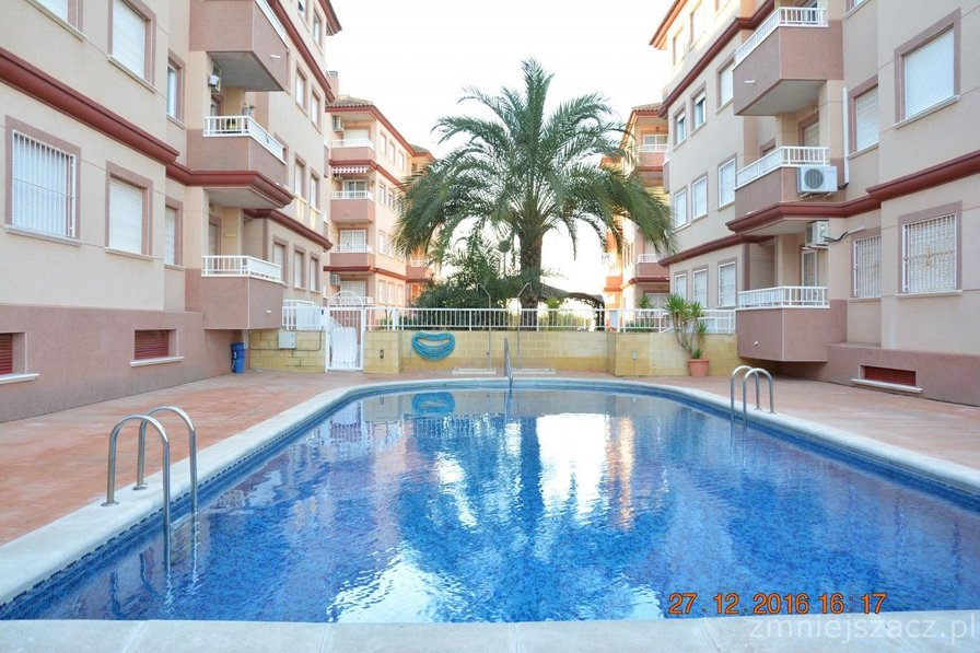 Apartment in Spain, Algorfa