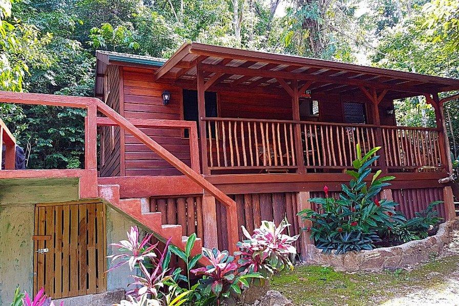 Tree Tops Vacation Rental