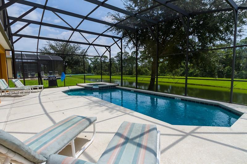 Villa in USA, Emerald Island: Pool area