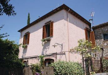Villa in Italy, Vigne