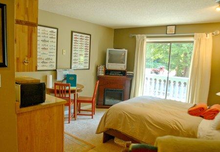 Studio Apartment in Washington, USA
