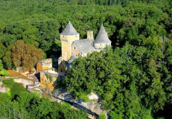Chateau in France, Proissans