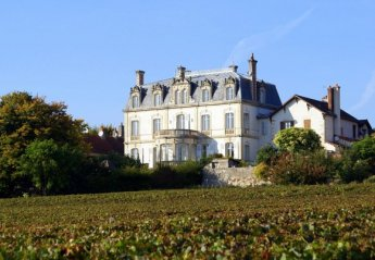 Chateau in France, Mercurey