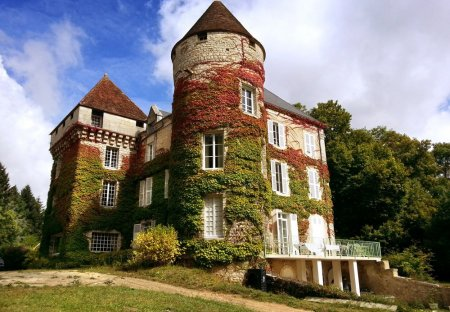 Chateau in Le Blanc, France