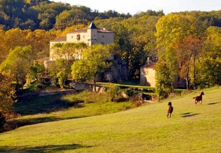 Chateau in Laroque-d'Olmes, the South of France