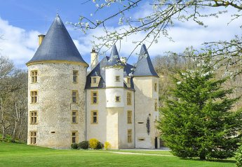 Chateau in France, Saint-Martory: Proprietes de France -  chateau de Saint-Martory (31)