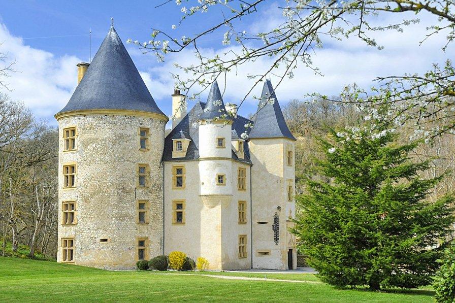Chateau in France, Salies-du-Salat: Proprietes de France -  chateau de Saint-Martory (31)