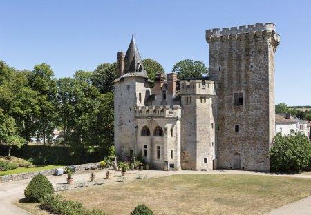 Chateau in Saint-Loup-Lamairé, France