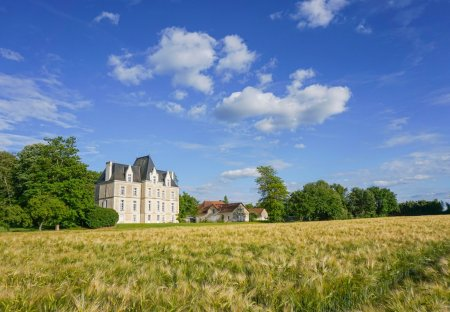 Chateau in Bonneuil-Matours, France