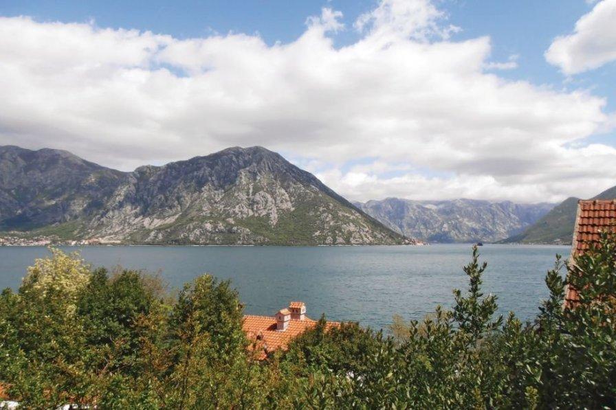 Apartment rental in Kotor