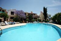 House in Cyprus, Tala: View of pool from my sunlounger