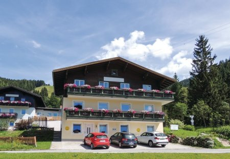 Apartment in Hofmarkt, Austria