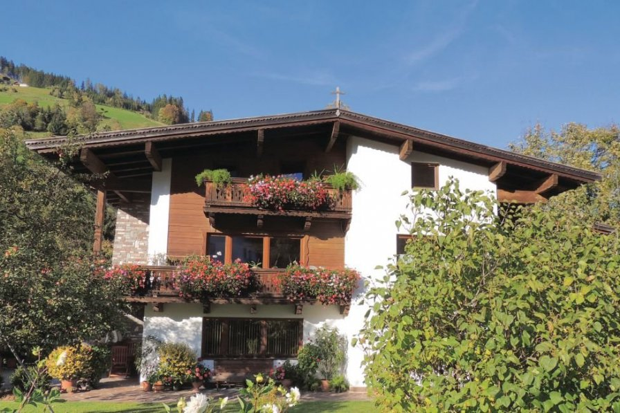 Apartment in Austria, Niederau