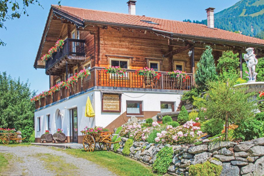 Apartment in Austria, St. Gallenkirch