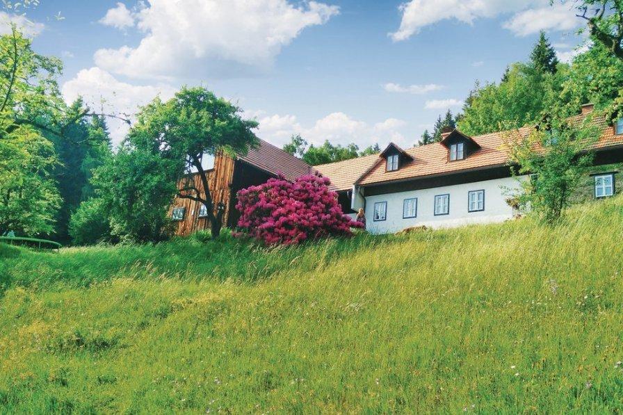 Chalet in Austria, Weiglhof
