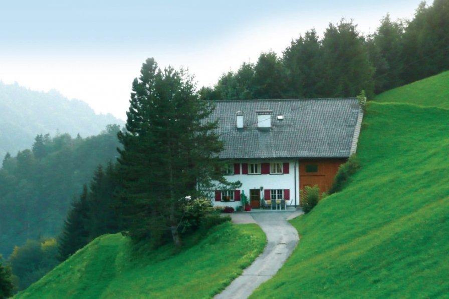 Apartment in Austria, Blons