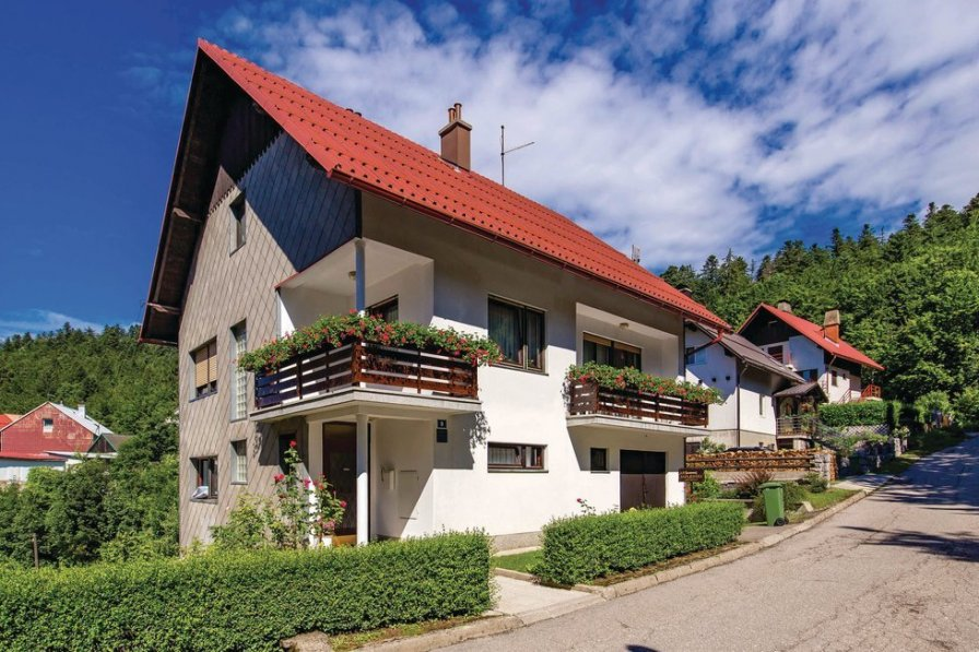 Apartment in Croatia, Delnice