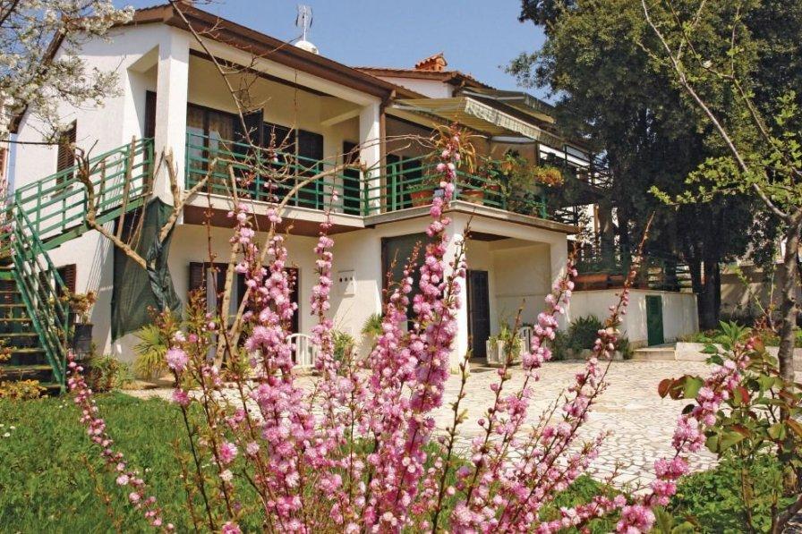 Apartment in Croatia, Pješčana Uvala