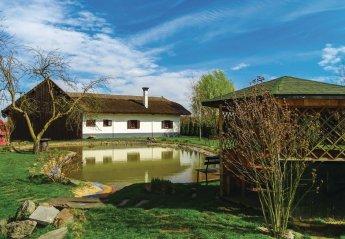 Villa in Slovenia, Polana