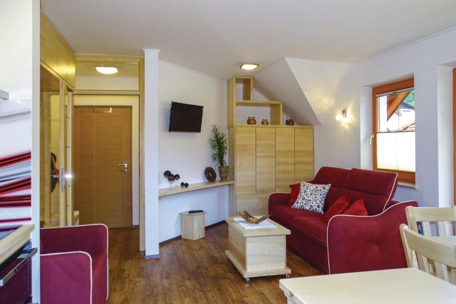 Studio apartment in Slovenia, Luče