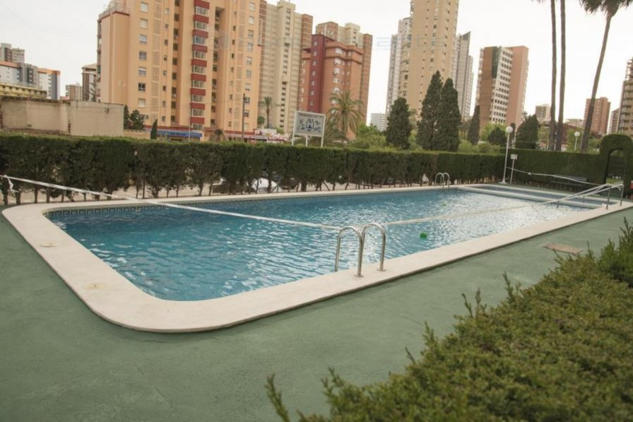 Apartment To Rent In Benidorm Spain With Shared Pool 222798