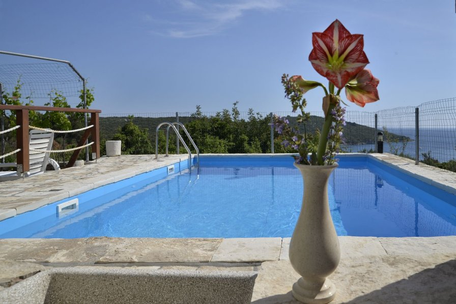 Apartment in Croatia, Maslinica