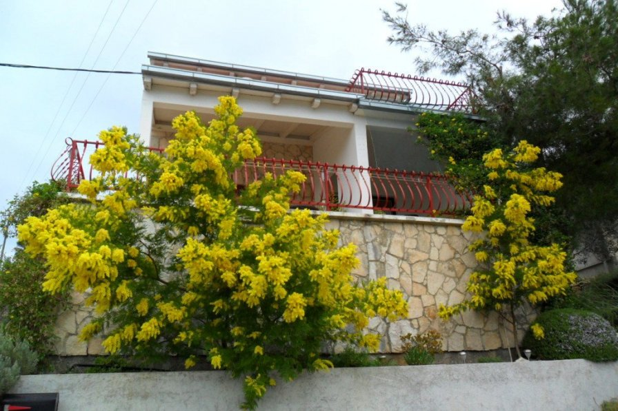 Apartment in Croatia, Rukavac (Vis)