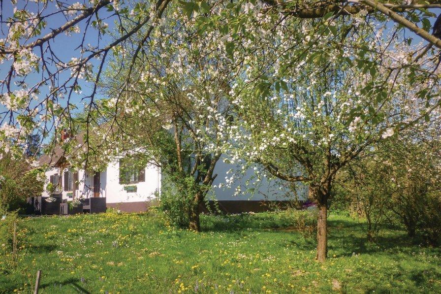 Chalet in Leitersdorf