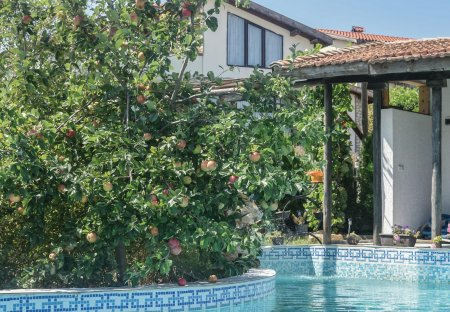 Villa in Osenovo, Bulgaria