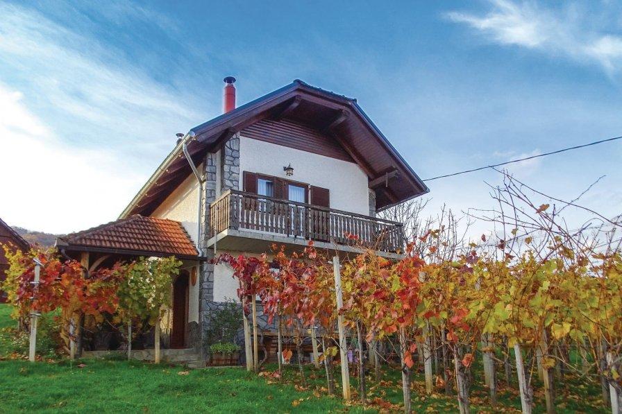 Villa in Slovenia, Stražnji Vrh