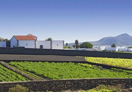 Villa in Urbanización Oasis de Nazaret, Lanzarote