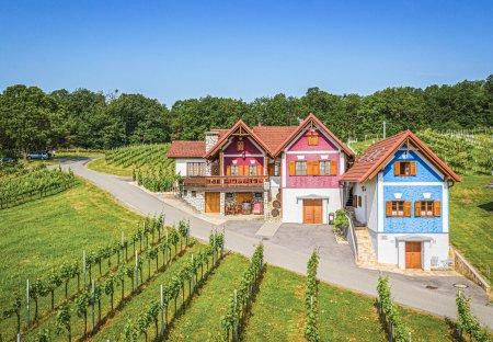 Chalet in Gaas, Austria