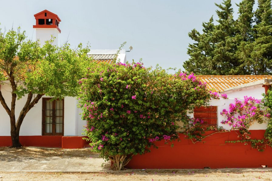 Villa in Spain, Puerto Real