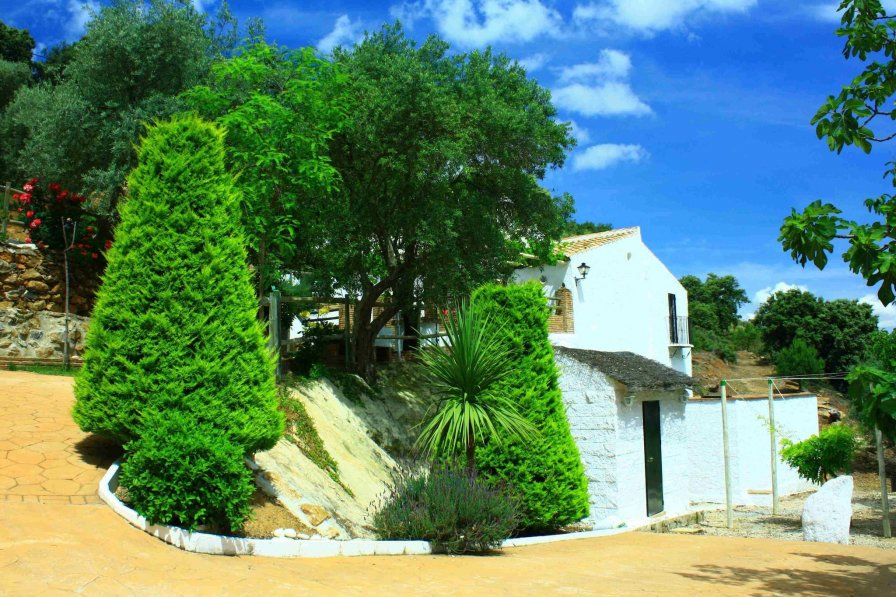 Cottage in Spain, Casabermeja