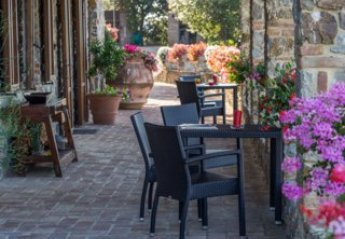 1 bedroom Apartment for rent in Civitella Paganico