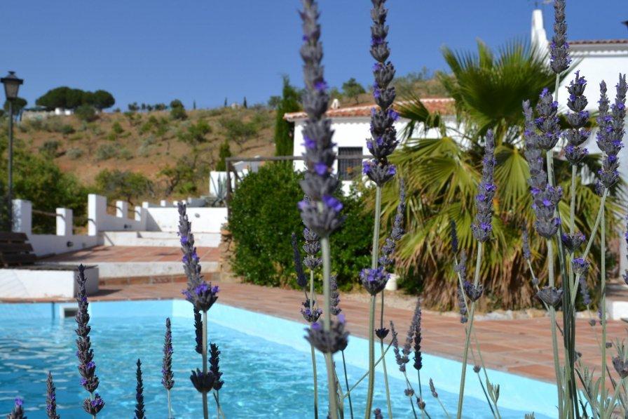 Villa in Spain, Almogía