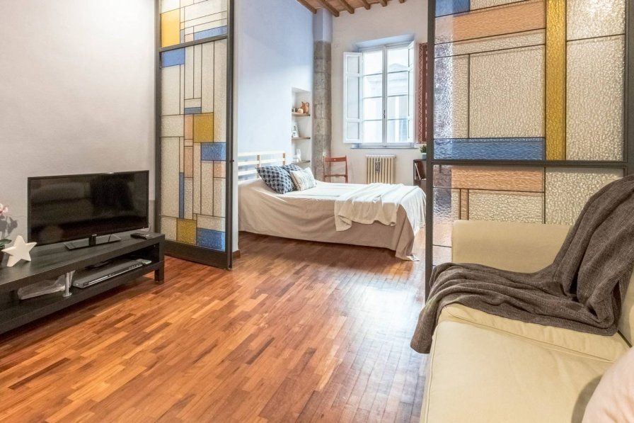 Apartment in Italy, Pisa