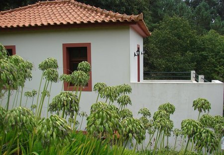 Villa in Achadinha, Madeira