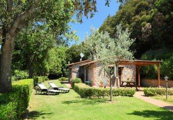 2 bedroom House for rent in Roccastrada