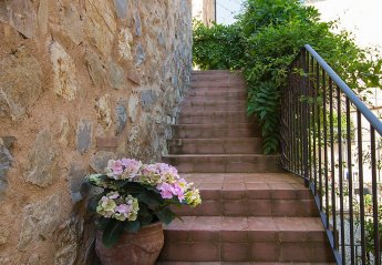 1 bedroom Apartment for rent in Gaiole in Chianti