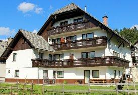 Penthouse Apartment in Bohinjska Bistrica, Slovenia