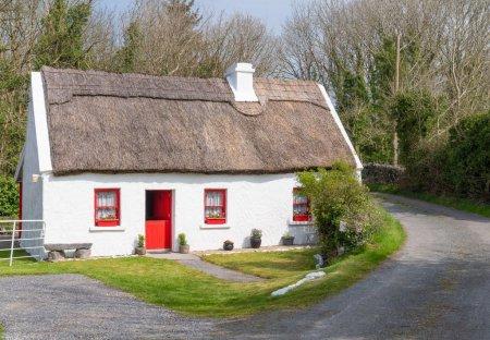 Bungalow in Ballywalter, Ireland
