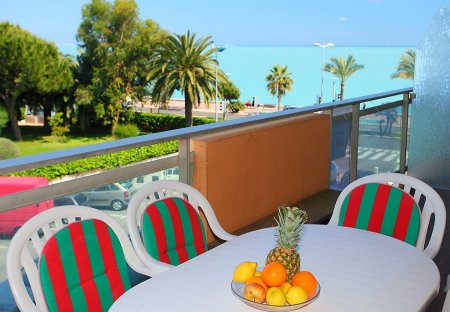 Apartment in Le Cros de Cagnes, the South of France