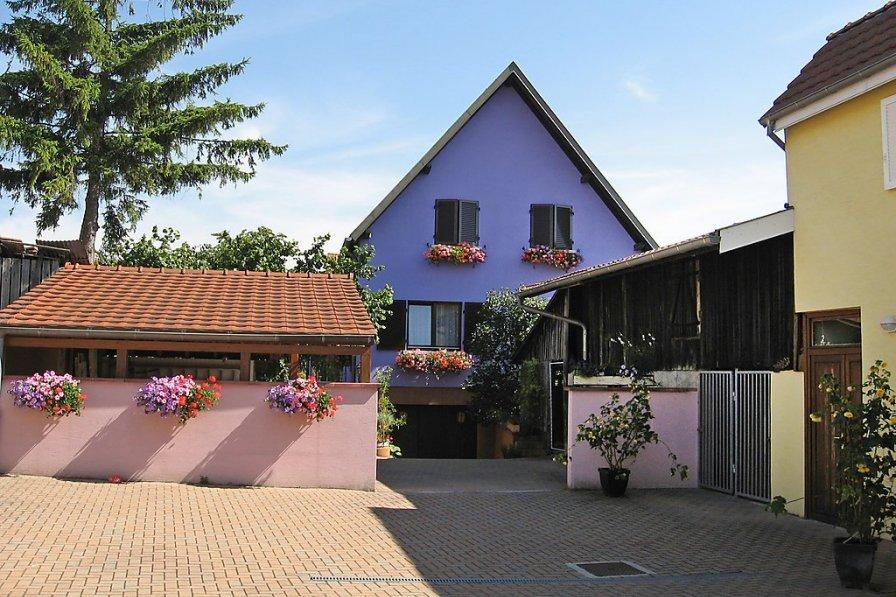 Apartment in France, Marckolsheim