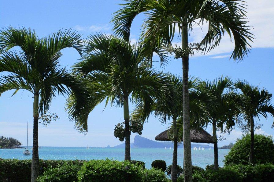 Villa in Mauritius, Grand Bay
