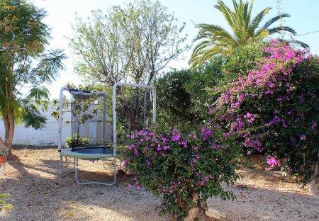 Villa in Sant Rafel, Spain
