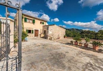 0 bedroom Villa for rent in Selva